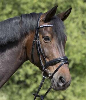 Horseware ersatzteile