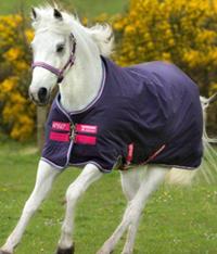 Fohlen-/ Ponydecken