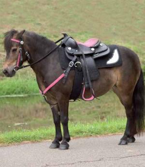 Waldhausen Western Ponysattel Think Pink