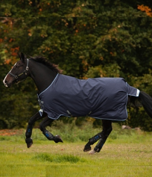 Horseware Turnoutdecke  Amigo 250g wasserd.1200 D