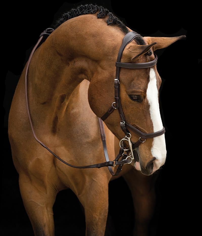 Horseware Trense Micklem Competition Rambo