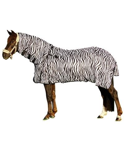 euroriding fliegendecke zebra mit halsteil f r das pferd. Black Bedroom Furniture Sets. Home Design Ideas