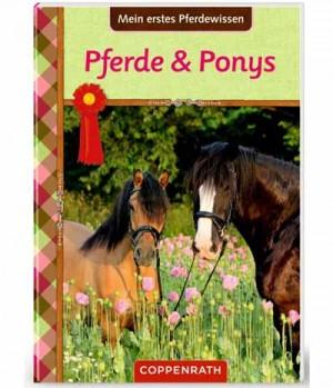 Hippobook Mein erstes Pferdewissen ab 8 32 Seiten
