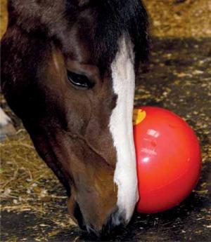 Waldhausen Likit Snack-a-Ball Futterspender Ball