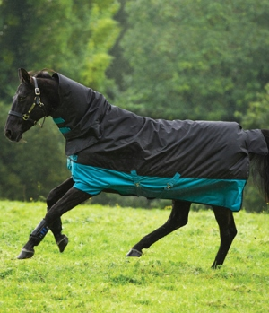 Horseware Turnoutdecke Amigo Mio All-In-One 200g