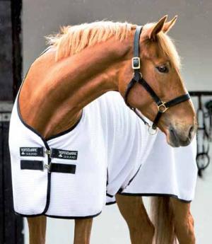 Horseware Sommerdecke Rambo Techni-Waffel