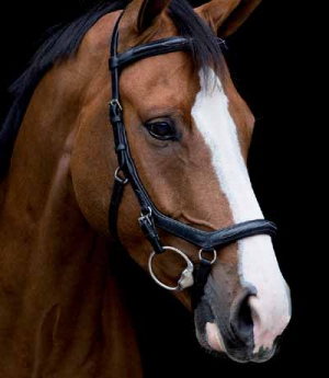 Horseware Trense Micklem DeLuxe Competition