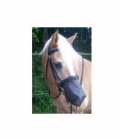 Inno Horse Nose Cover (300-10.08) - engl.komb
