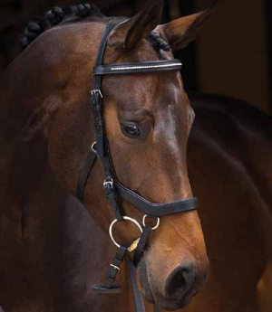 Horseware Trense Micklem Diamant Competition