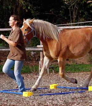 Barefoot Trainingsblock 6 Möglichkeiten für Stäbe