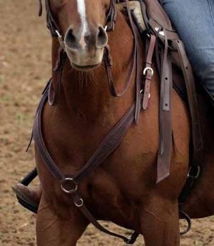 Barefoot Western Vorderzeug punziert gepolstert