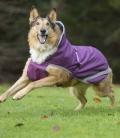 Bucas Hundedecke  Freedom 50g - amethyst