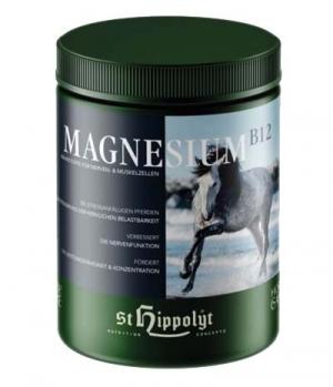 St.Hippolyt Magnesium Vitamin B12 von St.Hippolyt