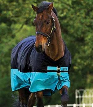Horseware Turnoutdecke Amigo Mio 200g 600D (5)