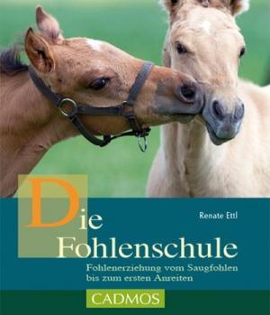 Hippobook Die Fohlenschule Renate Ettl