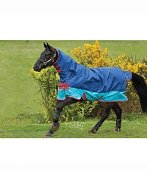 Horseware Turnoutdecke Amigo Mio Lite All-In-One