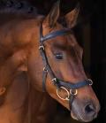 Horseware Trense Micklem Multibridle Rambo - schwarz