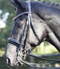 Kandare Luxury Lack Strasstirnband gesch - AU9schw-gr