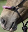Busse Knotenhalfter Glint für Bodenarbeit - schwarz-pink