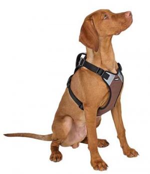 Hunter Dog Hundegeschirr Pulsive innen Meshmaterial