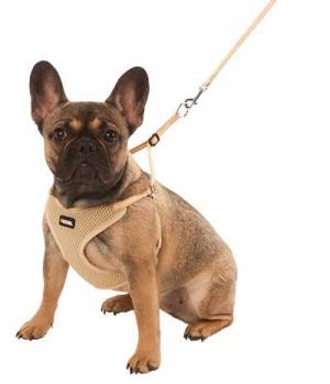 Hunter Dog Welpegeschirr aus weichem Meshmaterial