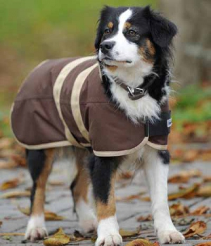 Hundedecke Move mit Kragen wasserdicht