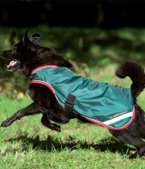 Hundedecke Rambo 2 in1 m.Fleeceliner 100