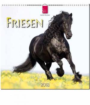 Hippobook Kalender 2018 Friesen Stürtz