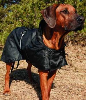 Back on Track Hundemantel ungefüttert