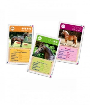 Hippobook Kartenspiel Quartett für 2-4 Spieler