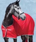 Horseware Abschwitzdecke Jersey Amigo mit KG(15) - rot
