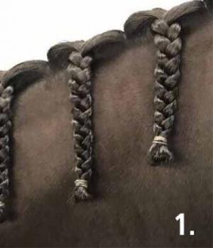 Busse Mähneneinflechthilfe Quick Knot