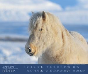 Hippobook Kalender 2019 Isländer Boiselle