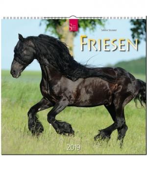 Hippobook Kalender 2019 Friesen