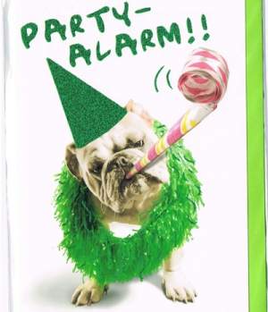 Hippobook Grußkarte Partyalarm