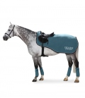 Eskadron Ausreitdecke Fleece Exercise HW19 Sale - tealblue