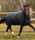 Horseware Turnoutdecke Trot Rug Plus 350g mit Hals - schwarz