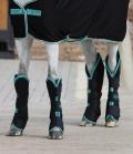 Horseware Transportgamaschen Amigo - black-teal