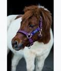 Horseware Halfter Amigo Nylon Sale 16,95€ - berry