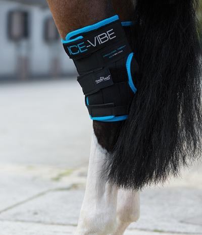 Horseware ICE Vibe Hock Boots Paar Kühlgamasche