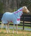 Horseware Ekzemerdecke Amigo Bug Rug Pony - azure-pink