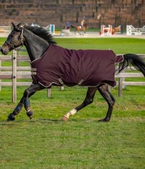 Horseware Turnoutdecke Amigo Hero 600 Ripstop **