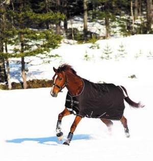 Horseware Turnoutdecke Amigo Bravo12 150g 1200Den