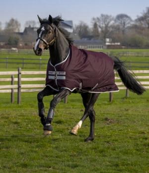 Horseware Turnoutdecke AmigoHero 600D Ripstop 50g