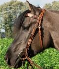 Wildhorn Westernzaum Hondo mit Rohhautflechtung - chestnut