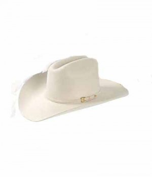 Westernhut Rodeo King 10X Sale
