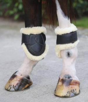 Kentucky Horsewear Streichkappe Leder Lammfell