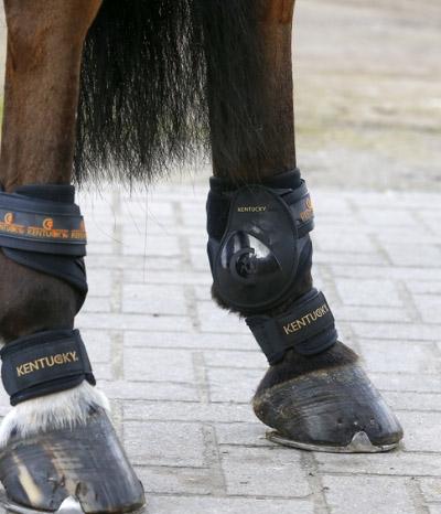 Kentucky Horsewear Fesselschutz Neoprene