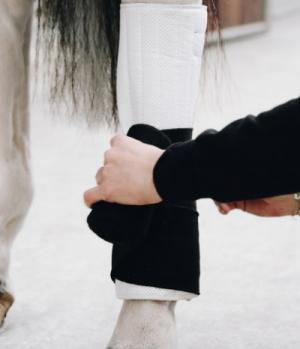 Kentucky Horsewear Bandagierunterlagen Absorb 4er