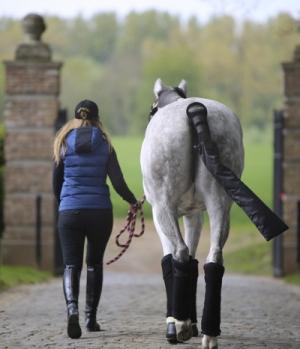 Kentucky Horsewear Schweifschoner mit Schweiftasche